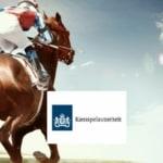 Monopolie offline wedden op paardenraces in Nederland